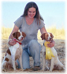 Alar Brittanys - Brittany Breeder/Puppies for Field, Show, Companion